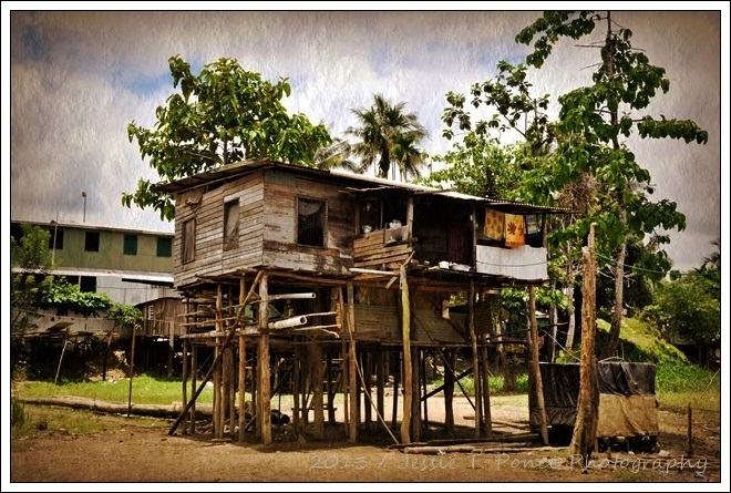 stilt houses along the fly river