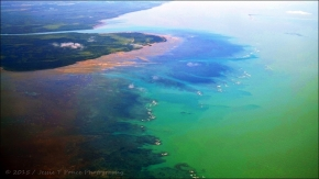 Fly River Delta