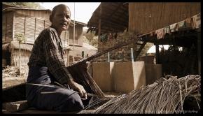 thatch weavers